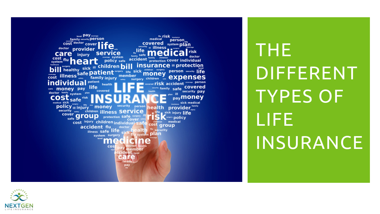 Types of Life Insurance Policies | Term & Permanent